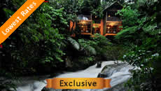 Wayanad Hotels Resorts